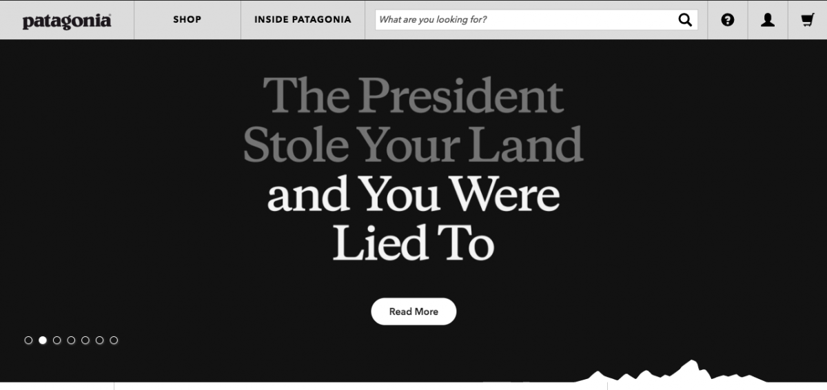 """Home page image from Patagonia.com """"The President Stole Your Land"""""""